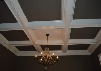 elegant trey ceiling design